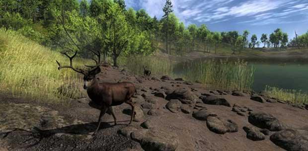 The hunter 2012 [repack by kintozavr] » game torrent скачать.