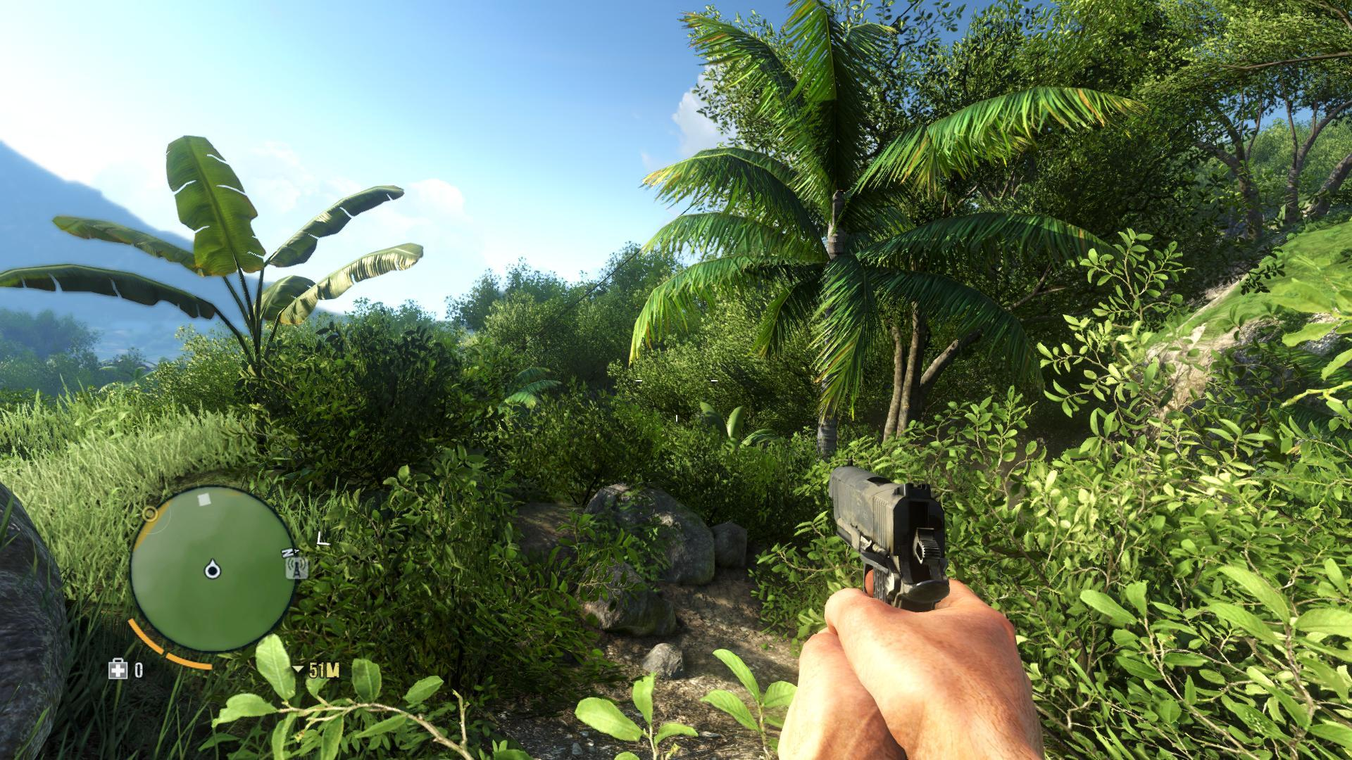 FarCry 3 [Intel] [Wine...