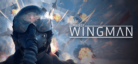 Project Wingman (2020) полная версия