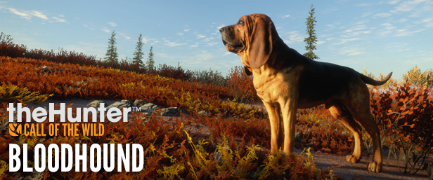 theHunter: Call of the Wild - Bloodhound (RUS/ENG) полная версия